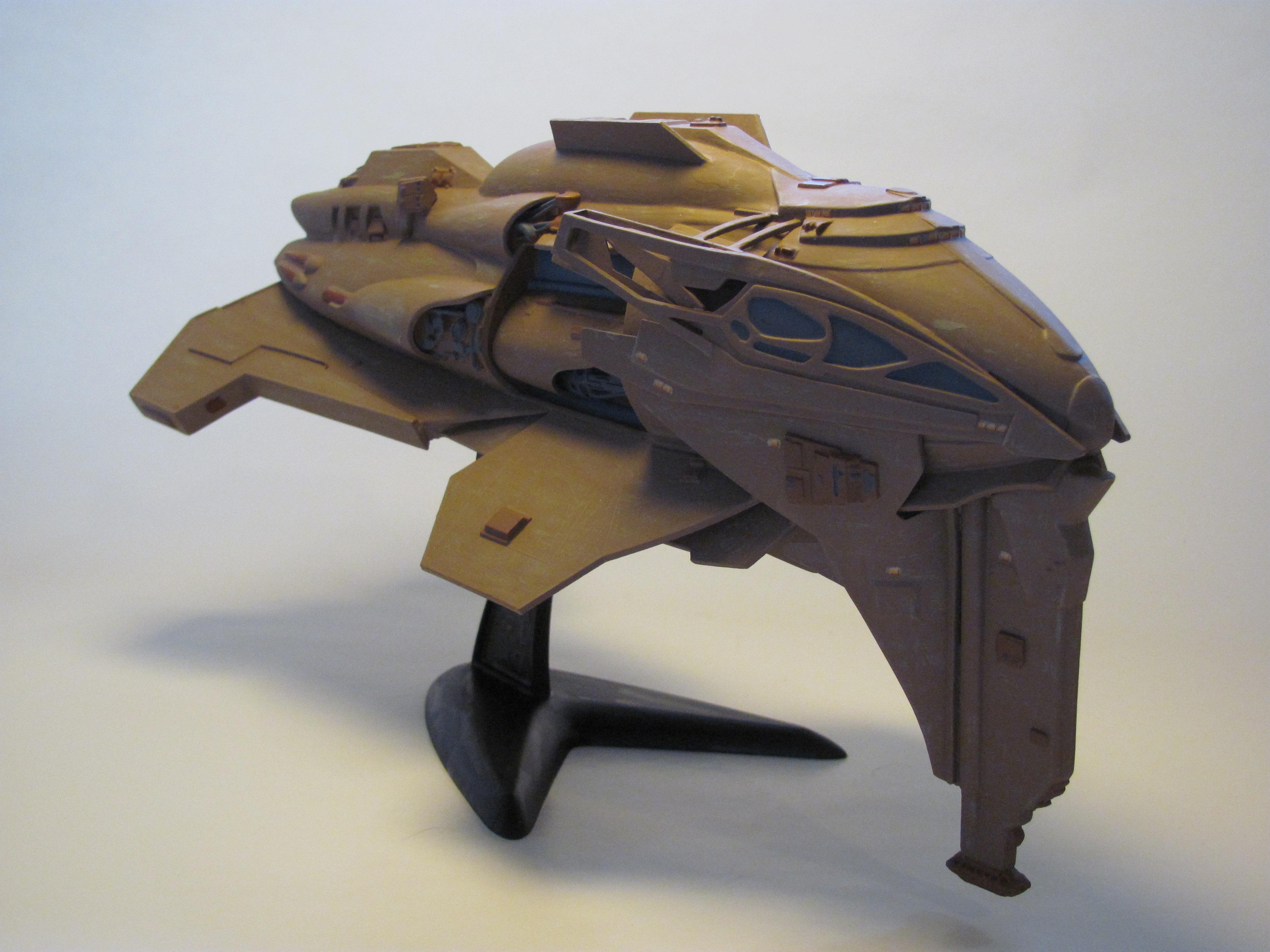 Kazon Raider